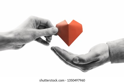 Red heart in woman and man hands. Black and white image on isolated white background. Concept of love,  giving gifts, donorship.