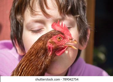 red hen stretching its neck across a young girls face. She has her eyes closed and is leaning in to kiss the female chicken.