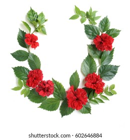 Red Hibiscus arrange with green leaves on white background