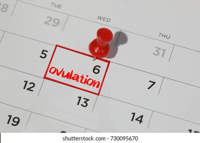 red highlighter with ovulation day mark on calendar