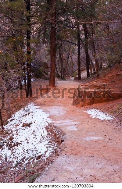 Red hiking path in Zion's National Park