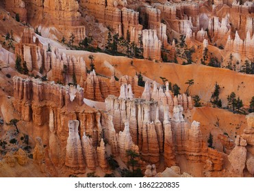 Red hoodoos amphitheater in Bryce Canyon National Park, Utah, United States. Scenic colorful panorama.