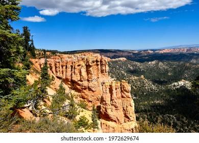 Red Hoodoos at Black Birch Canyon, Bryce Canyon National Park, Utah.