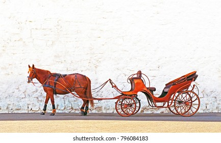 Red horse and brown phaeton on a background of white stone wall. To harness.   Equine crew for  walks. Tourist horse chariot, waiting outdoors. Carriage on the road