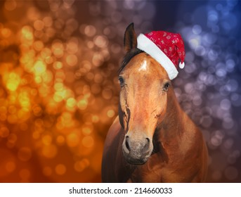 red horse in  Santa hat on Christmas background with bokeh