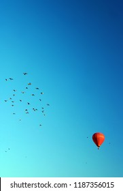 Red hot air balloon and birds rising into air