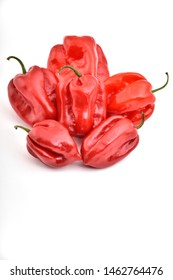 red hot habanero chili peppers isolated on white background