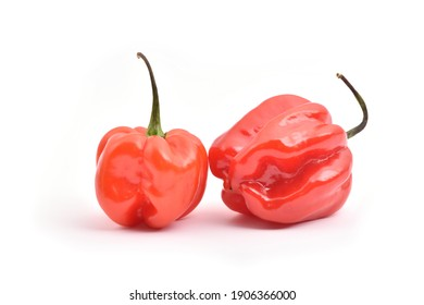 red hot habanero jalapeno bell peppers isolated on white background
