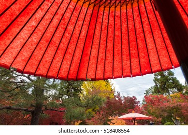 Red Japanese umbrellas with autumn leaves in a Japanese garden