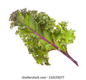 Red kale