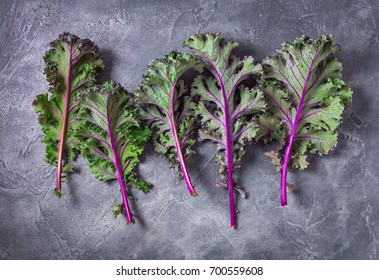 Red kale leaves or Russian kale on gray background