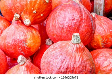 Red kuri squash at a farmer's market