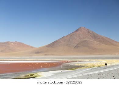 Red Lake in Atacama Desert, Bolivia.