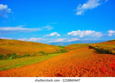 red land agriculture kunming