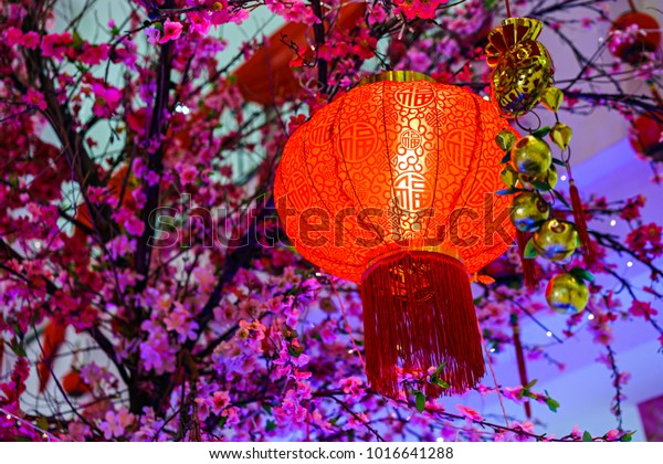 Red Lantern Light Artificial Cherry Blossom Stock Photo Edit Now