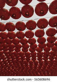 A Red Lantern to welcome the Chinese new year.