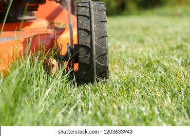 The red lawn mower mows the grass in the garden