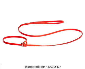 red lead-stranglehold for dog isolated on white background