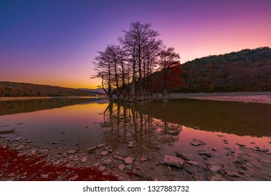 Red leaves in autumn on the branches of the swamp cypress trees in the water of a mountain lake the valley of Sukko. Famous old deciduous coniferous trees from the cypress family in the water.