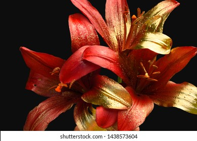 red lilies on a dark background, petals painted with spray paint, golden colors.