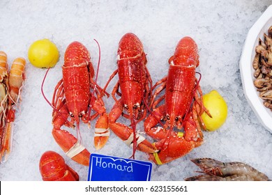 red lobster and shrimps on ice food background seafood