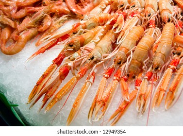 Red lobsters and shrimps on ice, fish market
