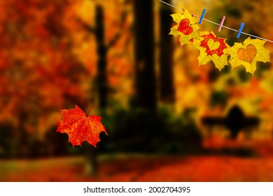 Red maple leaf falls down against magic autumn blur landscape. Color maple leaves carved love hearts hanging on the rope