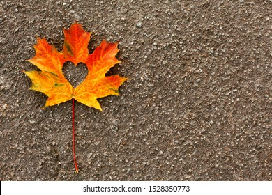 Red maple leaf with a heart shaped hole in the middle. Symbol of love. Autumn fallen leaf on the pavement. Autumn road, travel, walks, adventures. Copy space, flat lay.