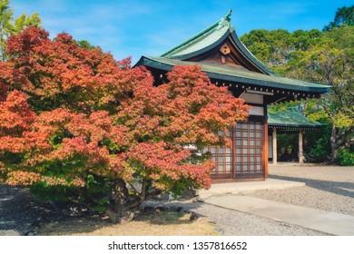 Red maple leaf of Hokoku shrine (Hokoku-jinja) in Osaka castle park, Osaka, Japan.