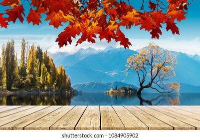 Red Maple Leaf and Perspective Wood on lone Tree in Wanaka lake Background