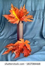 red maple leaves in vase stil life