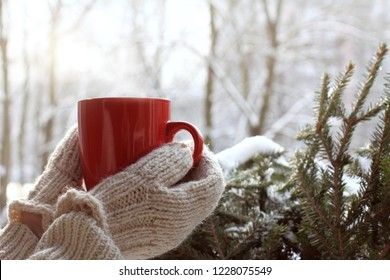 red mug in hands dressed in mittens against the background of an evergreen tree in winter / warming drink for mood
