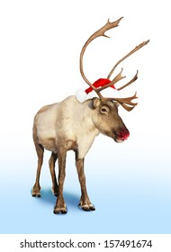 red nose reindeer or caribou with Christmas hat