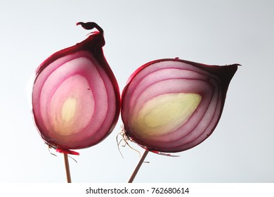 Red onions macro picture with white background