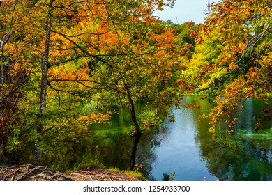 Red orange leaves of autumn trees are reflected in the green cold water. Cascading Plitvice lakes in Croatia on a cloudy warm day. The concept of ecological, active and phototourism