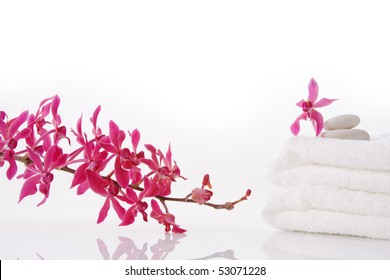 red orchid bunch with towel on white