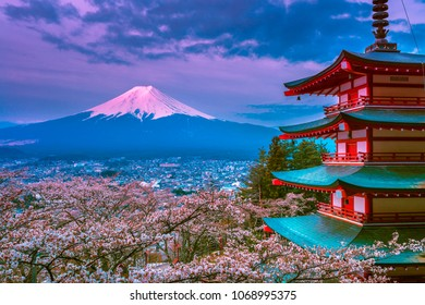 Red Pagoda and Cherry Blossom with Mt Fuji at sunrise