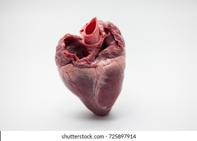 Red pig hearts.on white background.