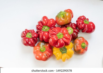 """Red pimiento bell pepper - romanian variety """"gogosari"""""""