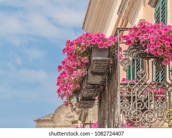 red and pink rose flowers on the balcony of a old vintage house in the Matera under blue sky, concept of spring is coming