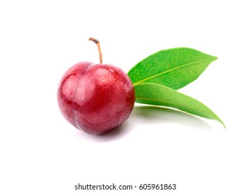 Red plum fruit on white background