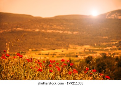 Red poppies on the meadow in golden evening sun beams . Provence, France. Selective focus. Aged photo. Retro style postcard.
