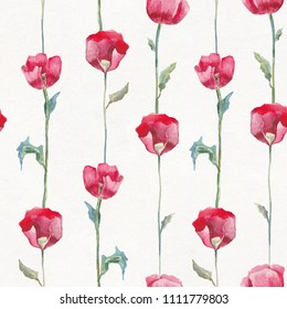 Red poppies on white background. Seamless watercolor floral pattern