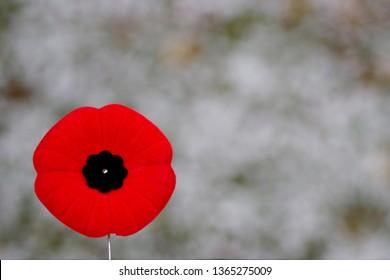 Poppy Pin Images, Stock Photos & Vectors | Shutterstock