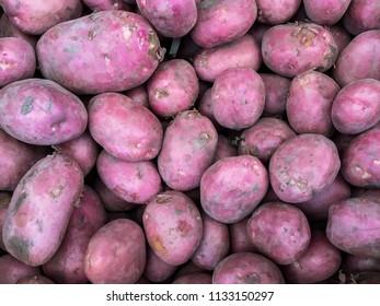 red potato garden fresh vegetable