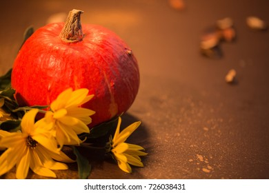 red pumpkin and yellow flowers/ warm home sunny light