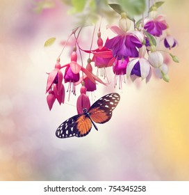 Red and Purple Fuchsia Flowers and butterfly