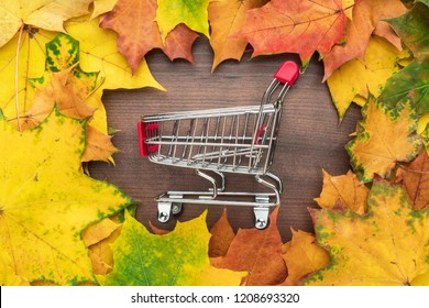 red pushcart in the centre of autumn leaves frame. fall sale season concept