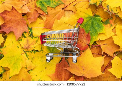 red pushcart over colorful autumn leaves background. fall sale season concept