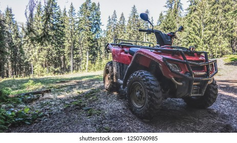 red quad bike in the forest, side and front view